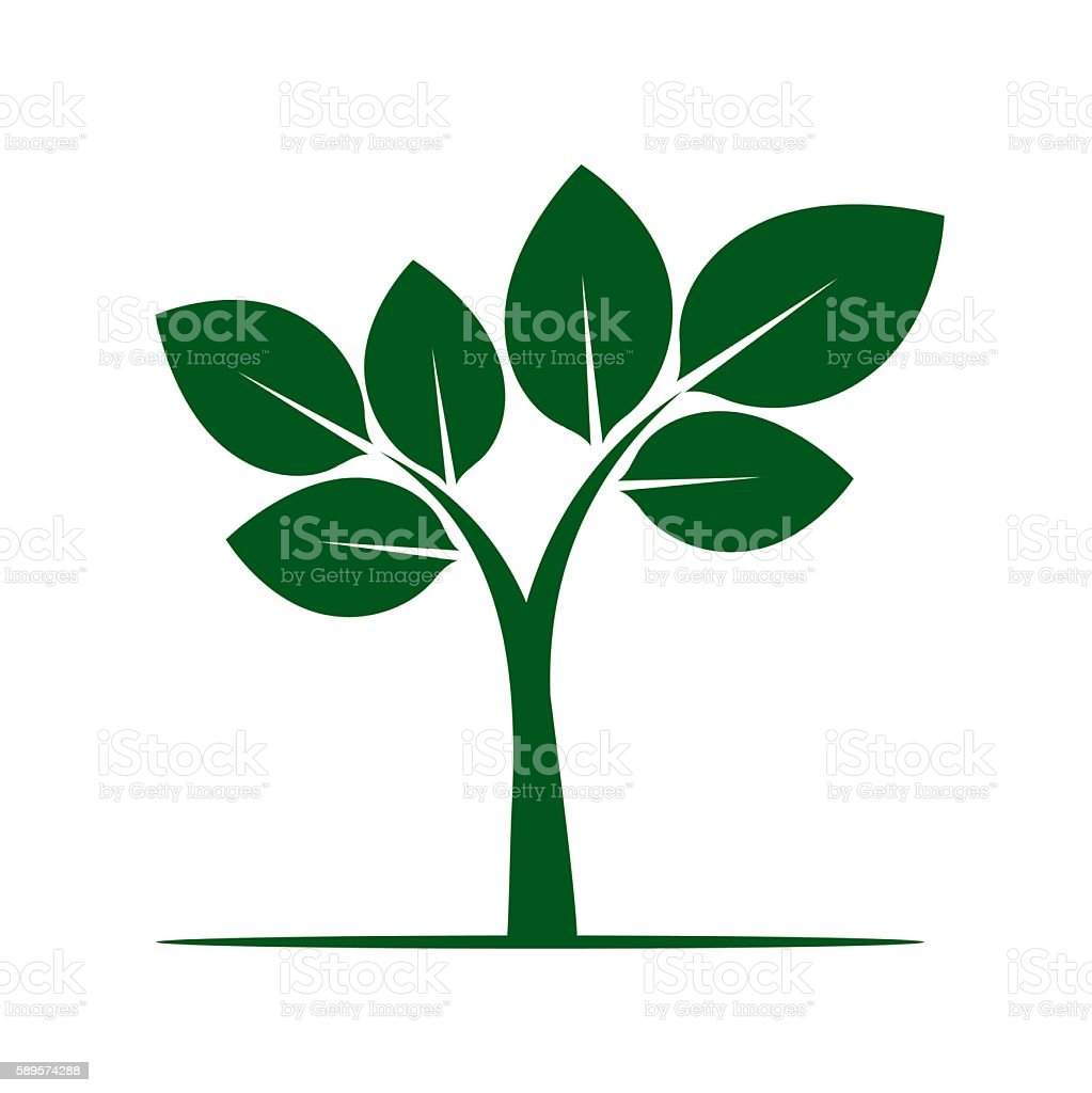 Shape of Green Tree. Vector Illustration. Plant and Nature vector art illustration