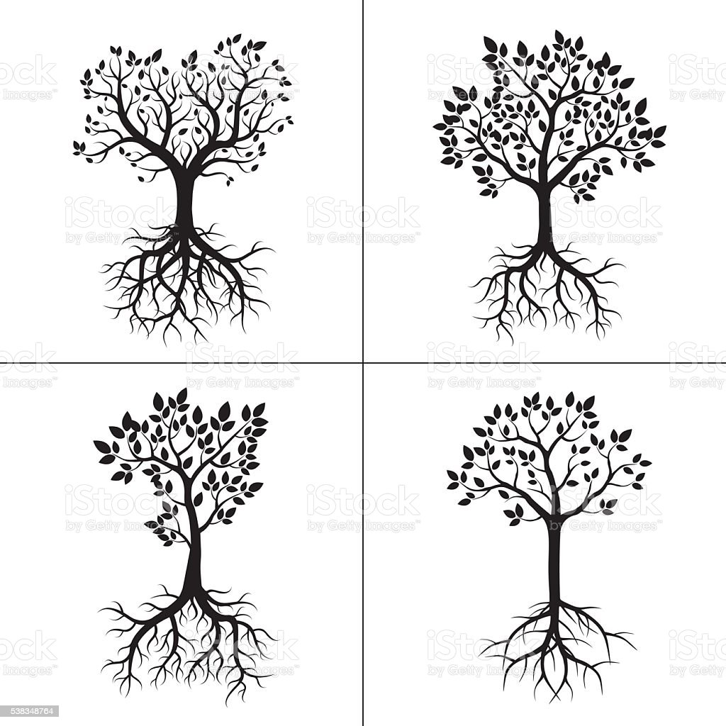 Shape of Trees, Roots and Leafs. Vector Illustration. vector art illustration
