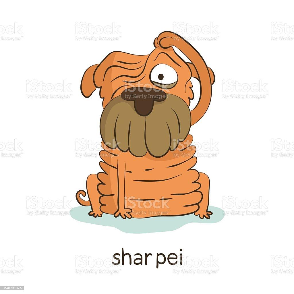 Shar pei. Dog character isolated on white vector art illustration