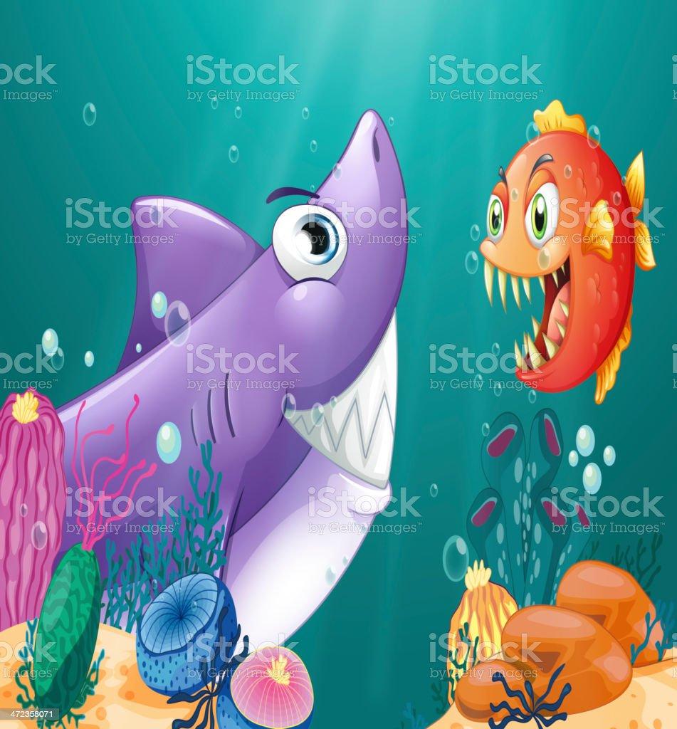 Shark and a piranha under the sea royalty-free stock vector art