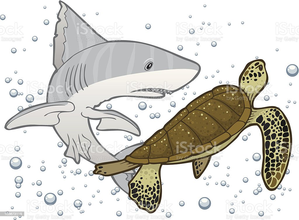 Shark and Turtle in Bubbles royalty-free stock vector art