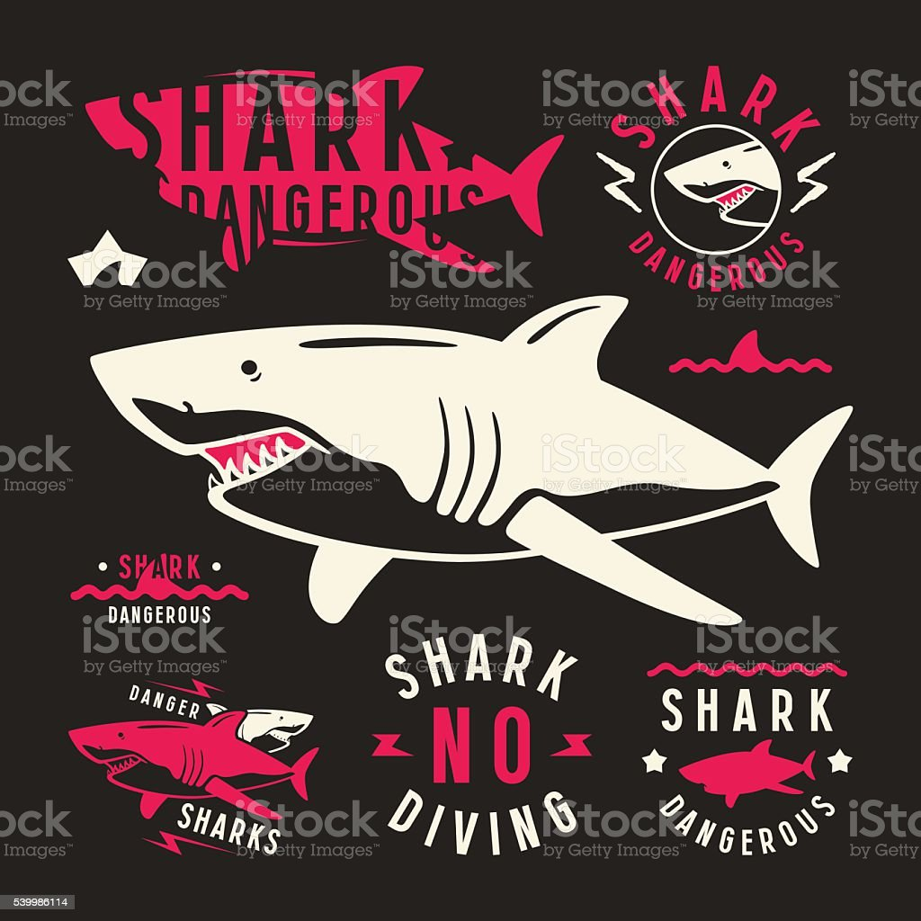 Shark dangerous emblems vector art illustration