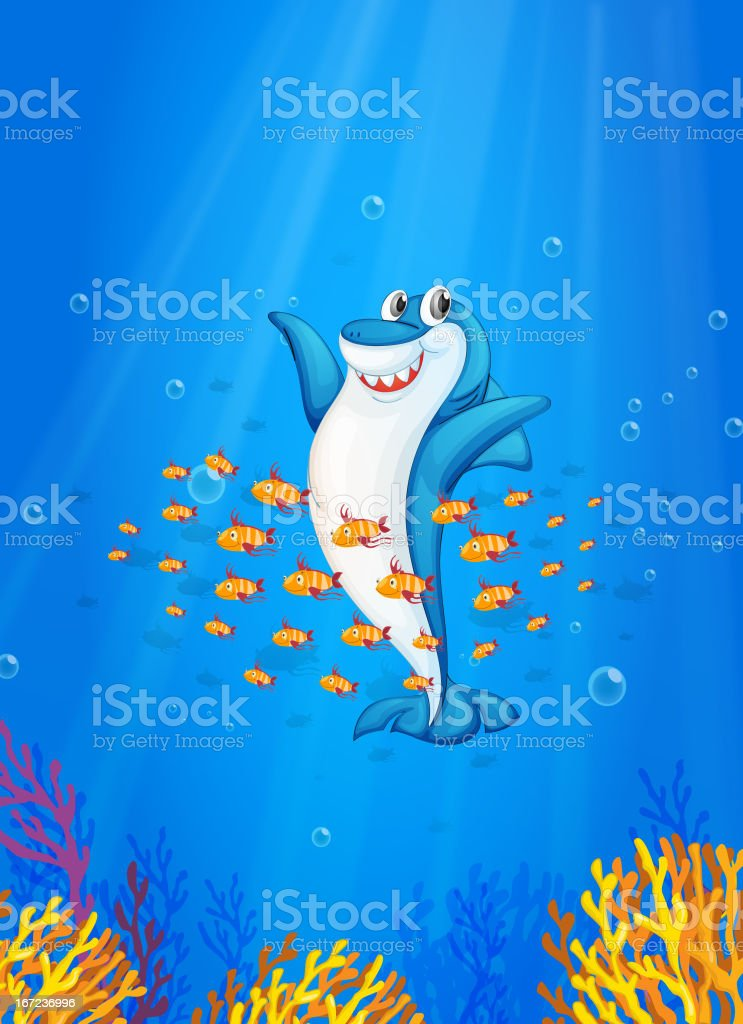 Shark fish royalty-free stock vector art
