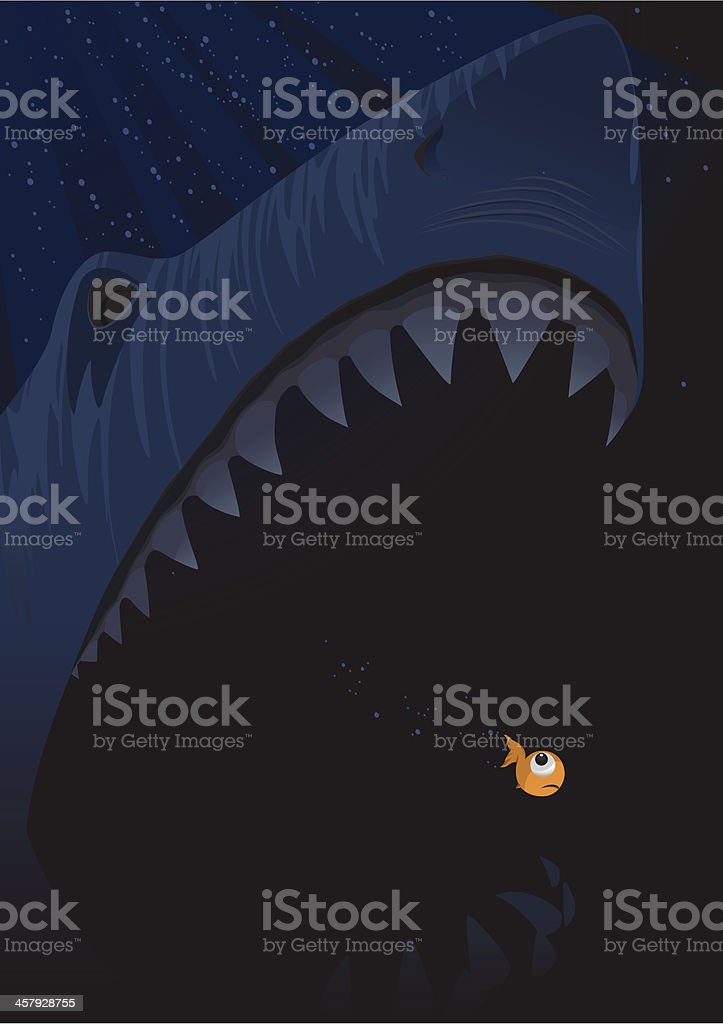 Shark & Fish vector art illustration