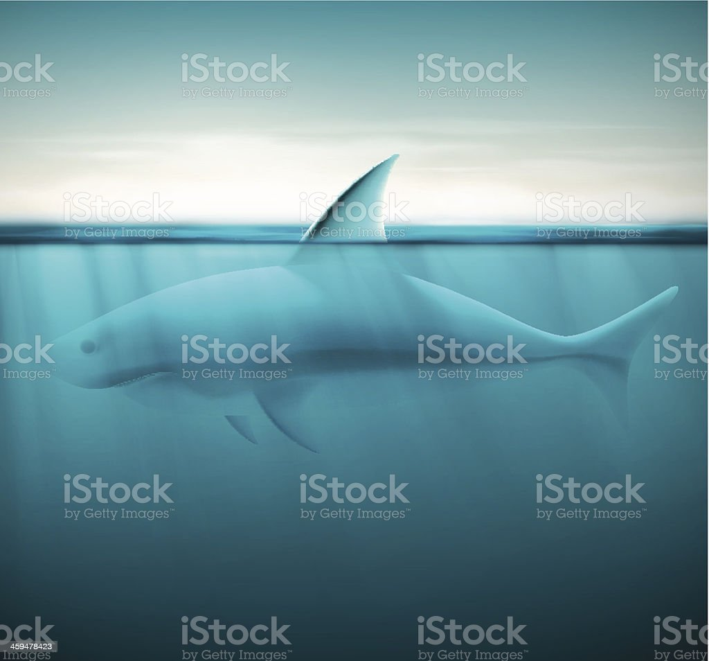 Shark in ocean vector art illustration