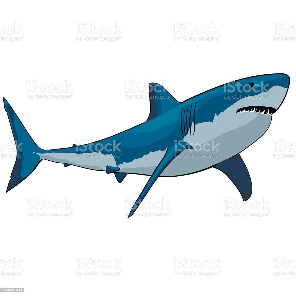 Requin stock vecteur libres de droits libre de droits