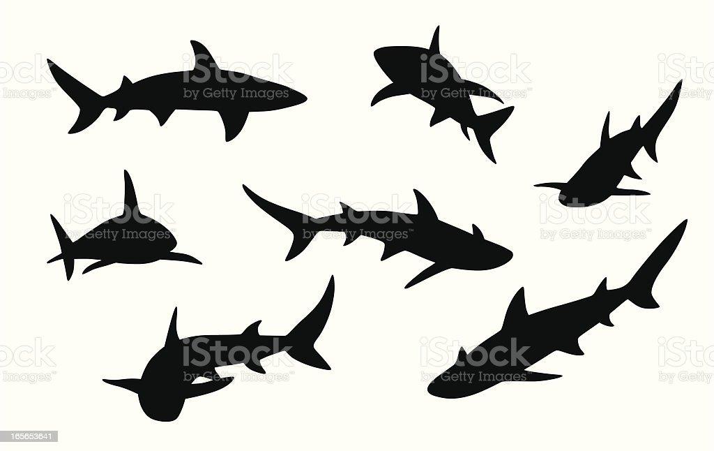 Sharks Vector Silhouette royalty-free stock vector art