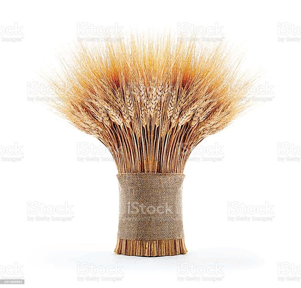 Sheaf Of Wheat vector art illustration