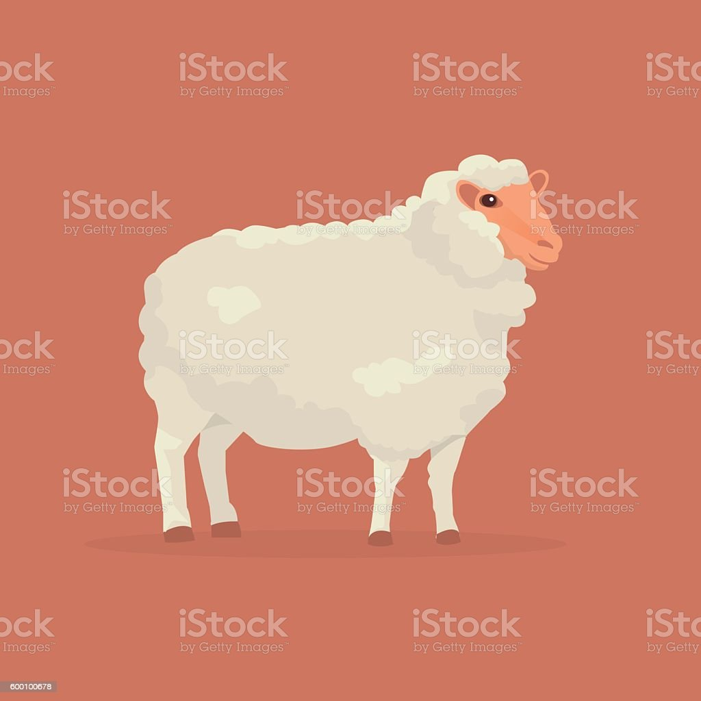 Sheep cartoon vector illustration vector art illustration