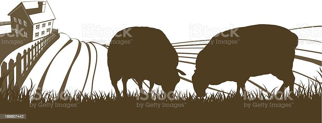 Sheep Farm Rolling Hills Landscape vector art illustration