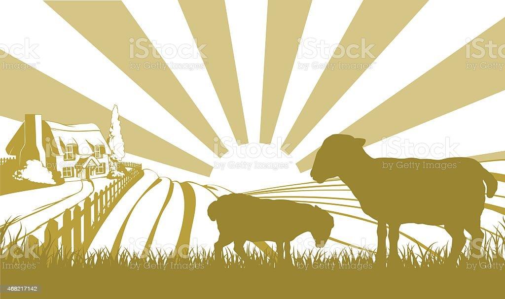 Sheep farm scene vector art illustration
