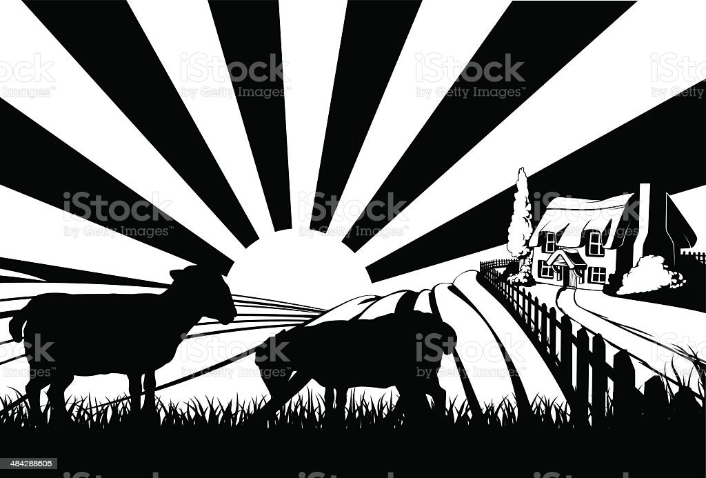 Sheep field concept vector art illustration