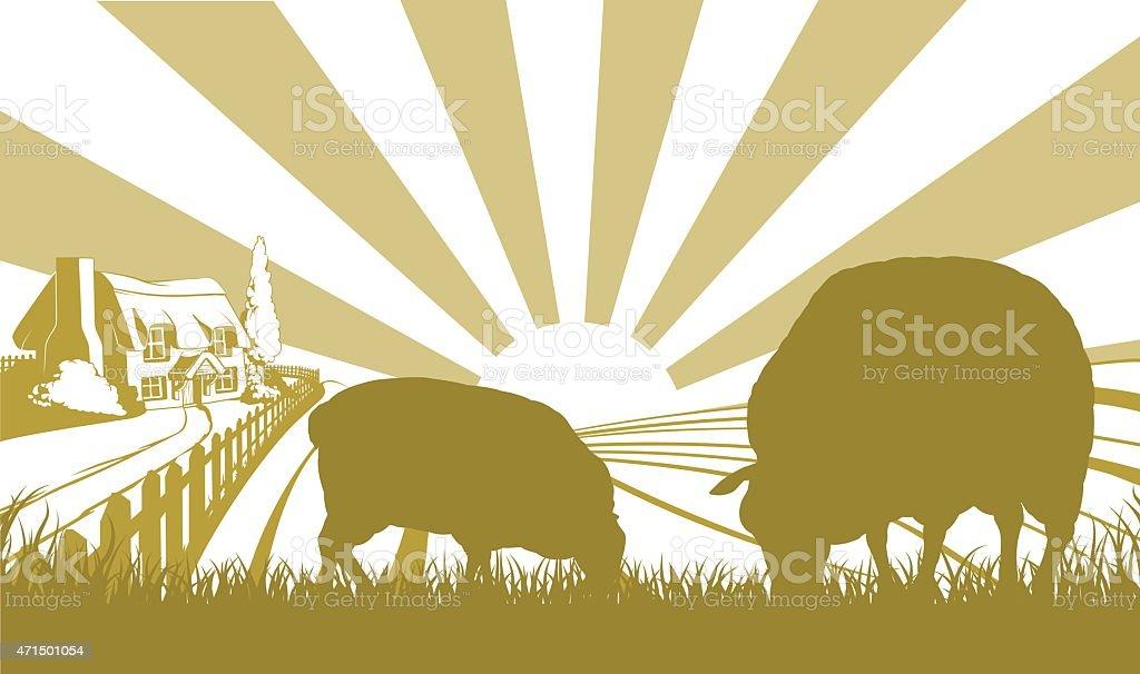 Sheep in farm field scene vector art illustration