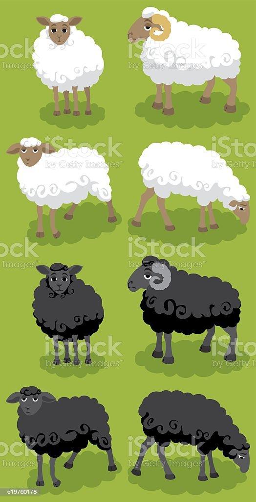Sheep vector art illustration