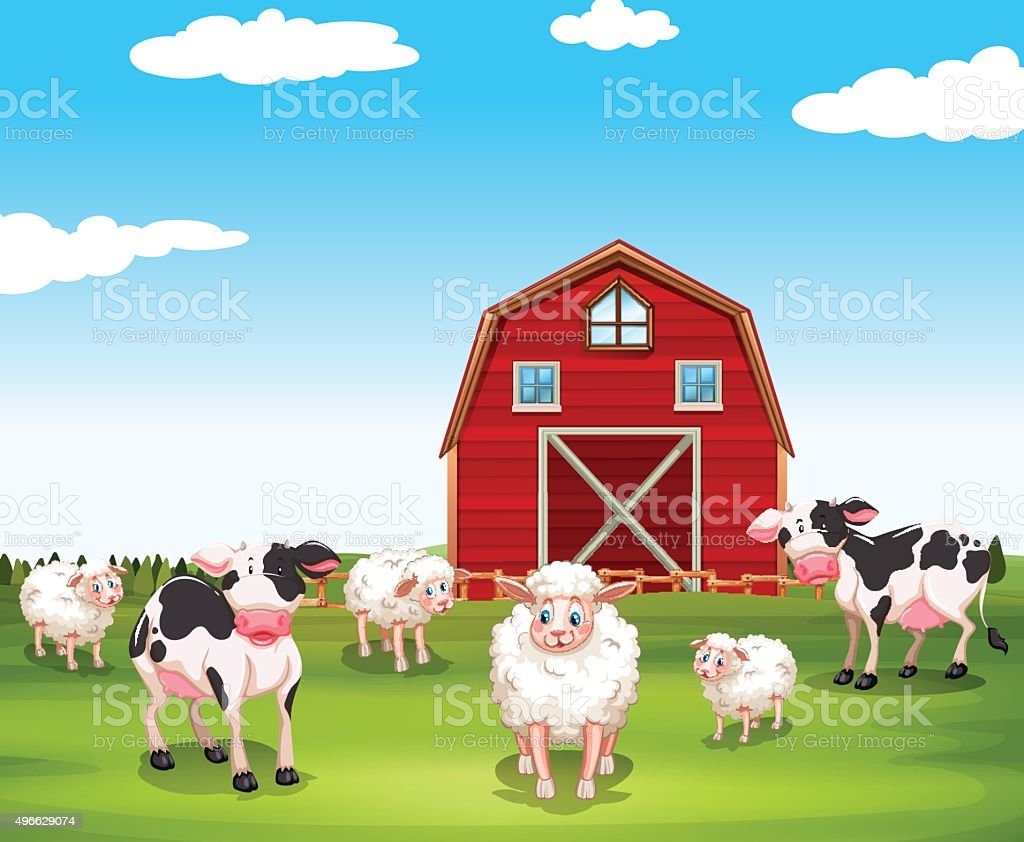 Sheeps and cows on the farm vector art illustration