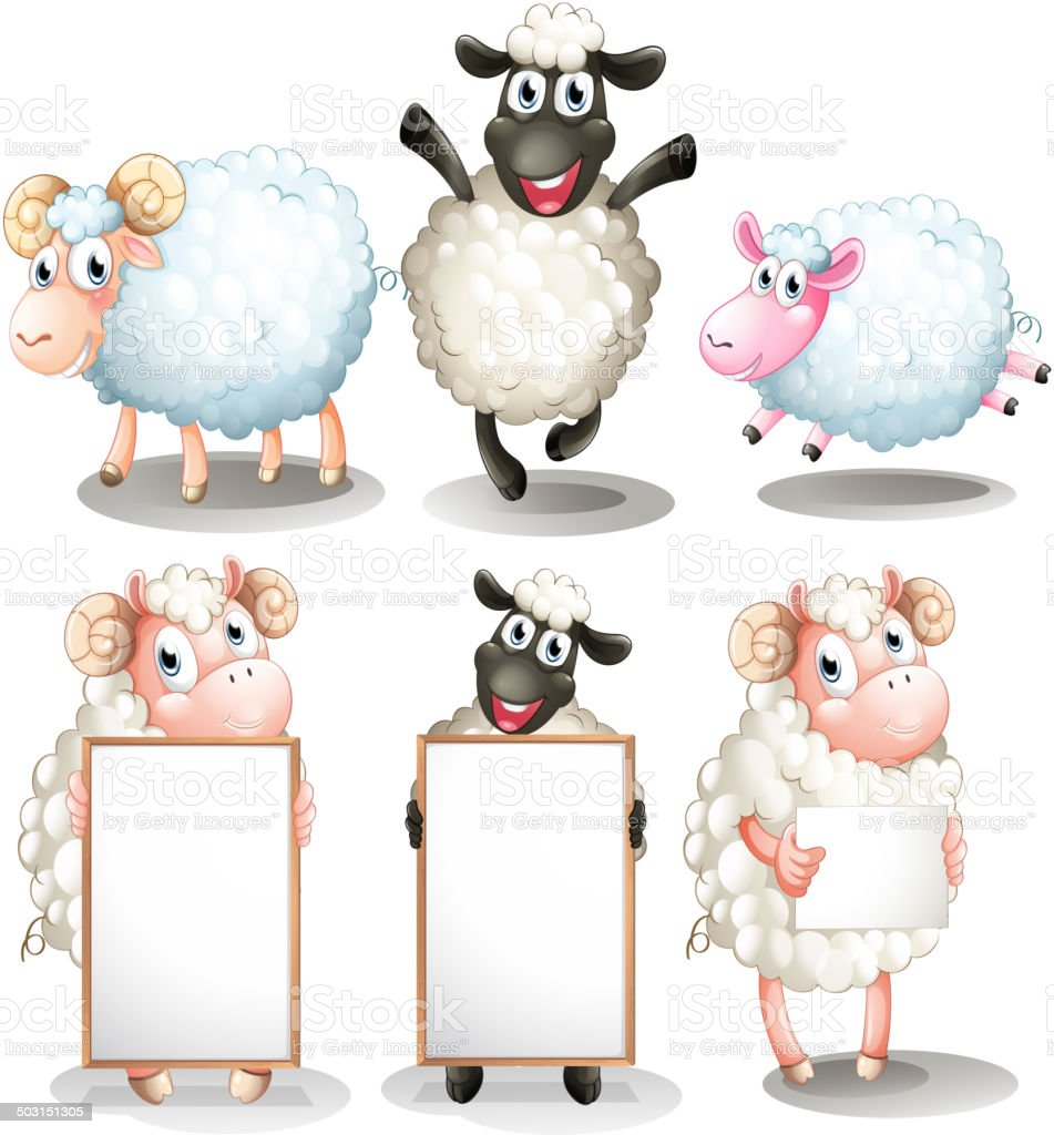 Sheeps and lambs with empty boards vector art illustration