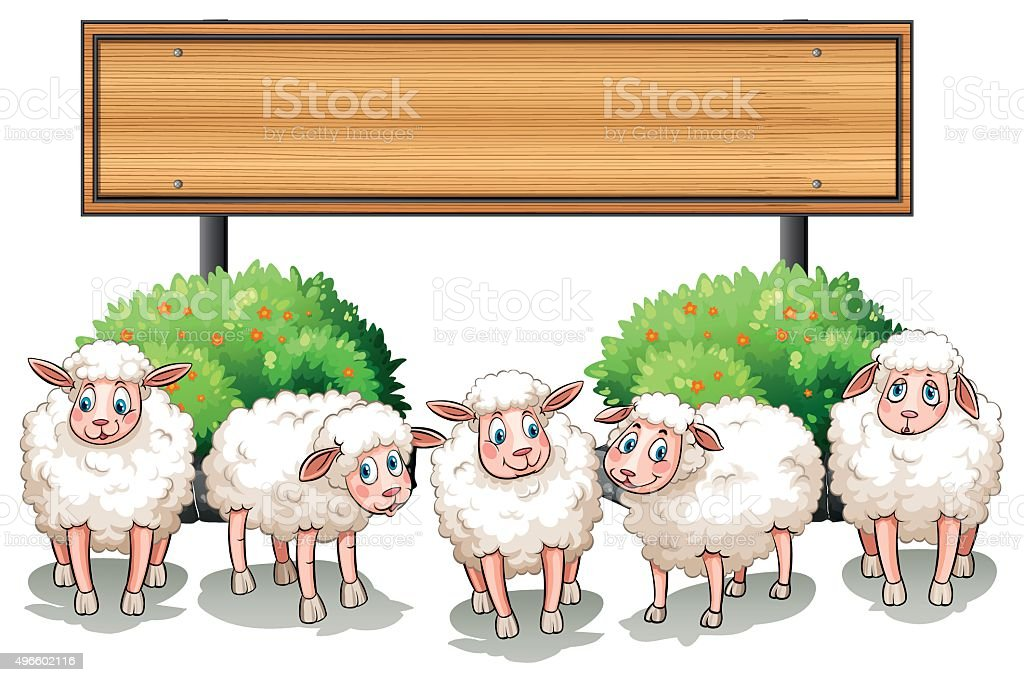 Sheeps and wooden sign vector art illustration