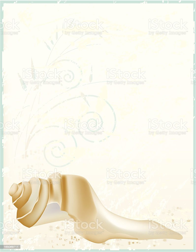 Shell on textured background vector art illustration