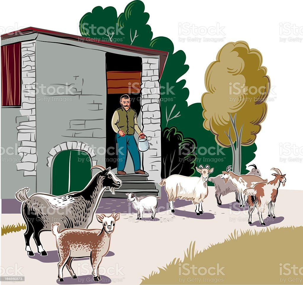 Shepherd And Goats royalty-free stock vector art