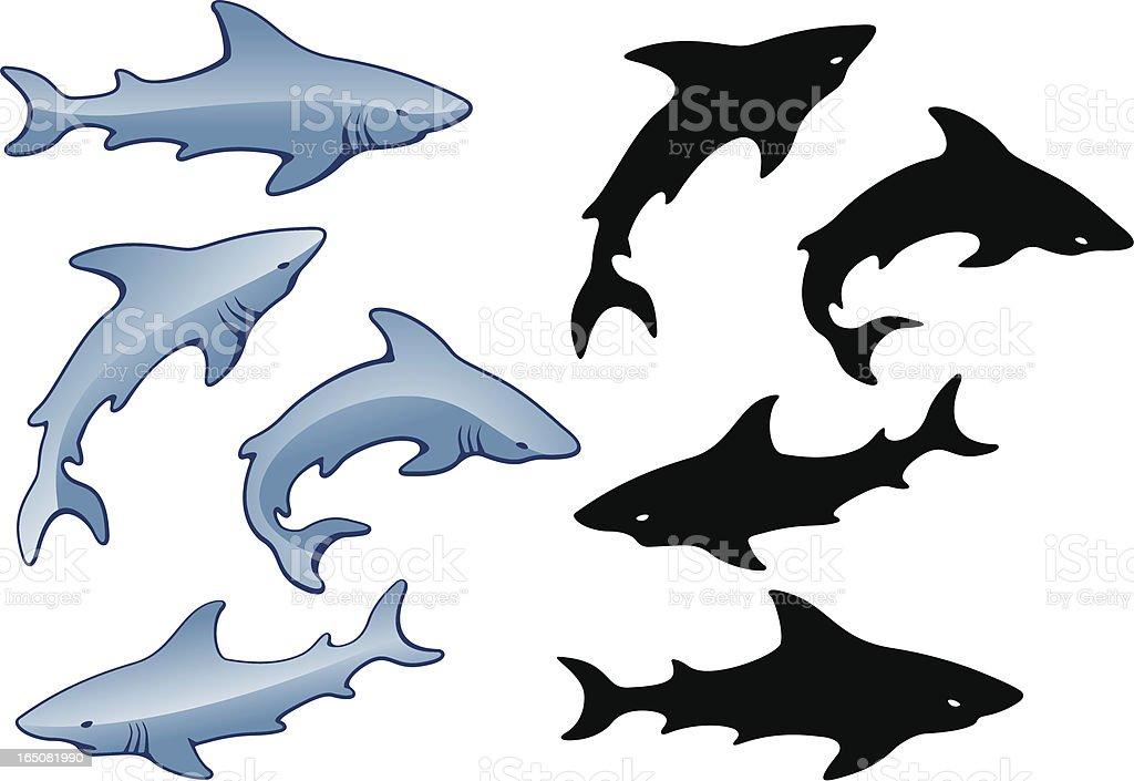 Shiny Sharks vector art illustration