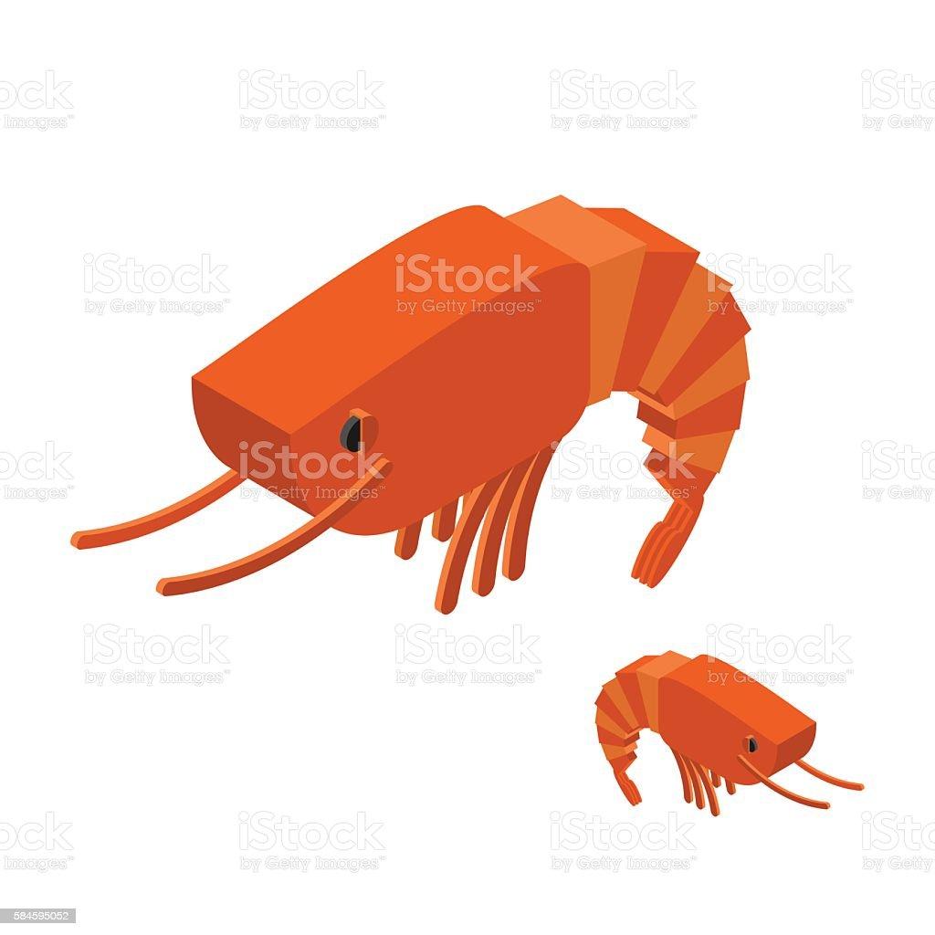 Shrimp Isometric on white background. Marine arthropod animal. O vector art illustration