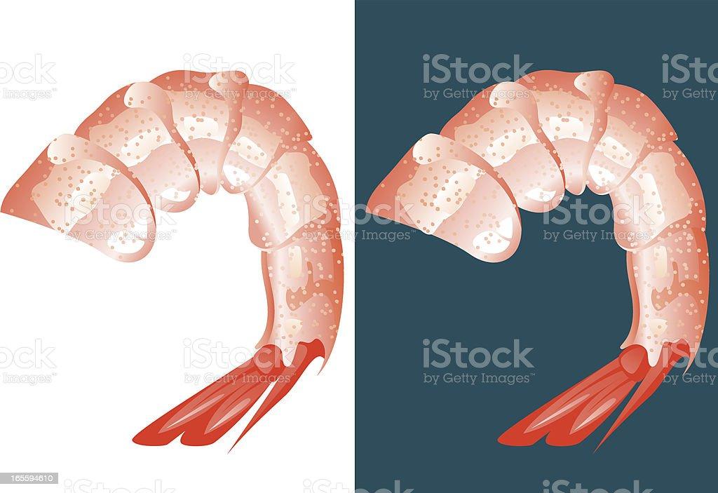 Shrimp meat vector art illustration