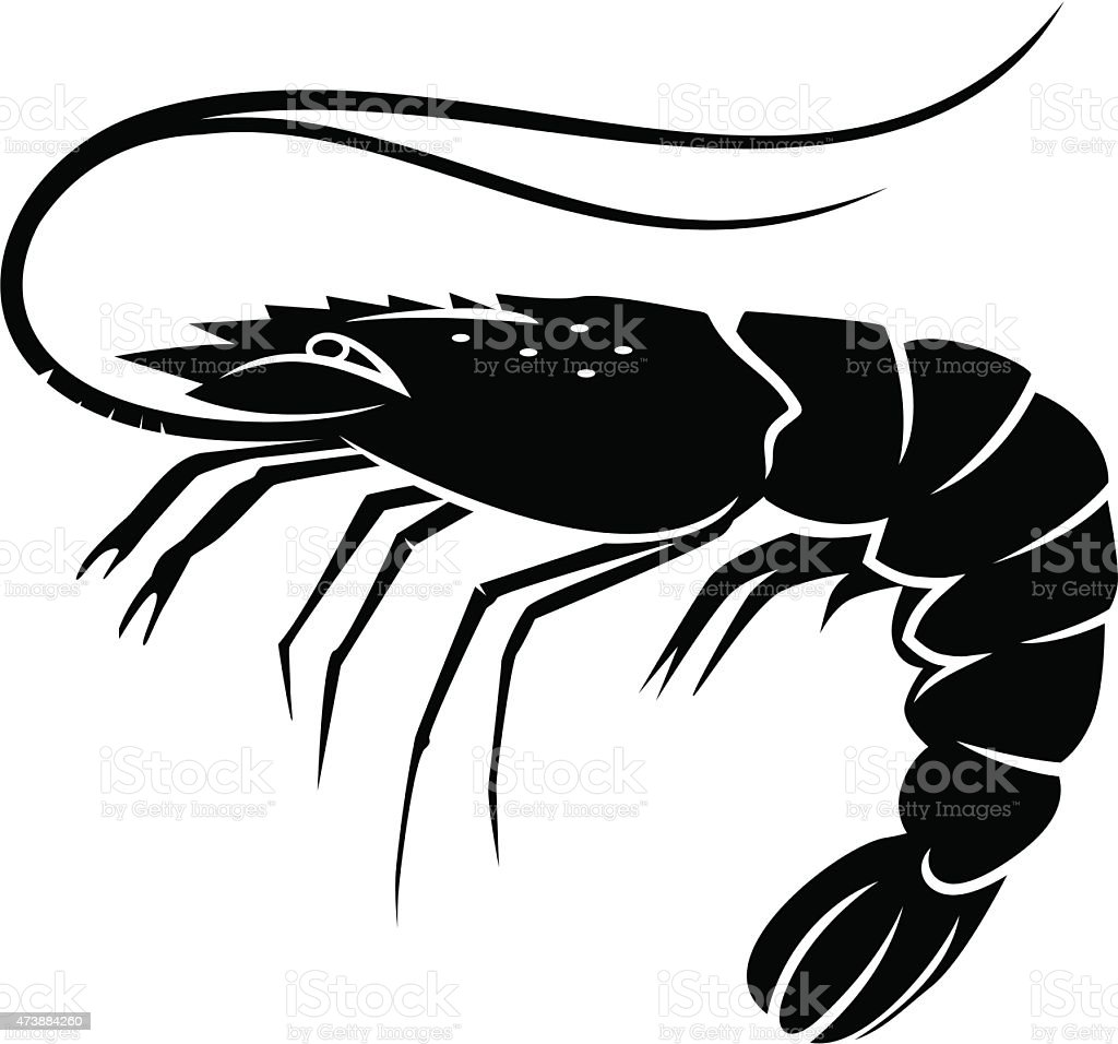 shrimp vector vector art illustration