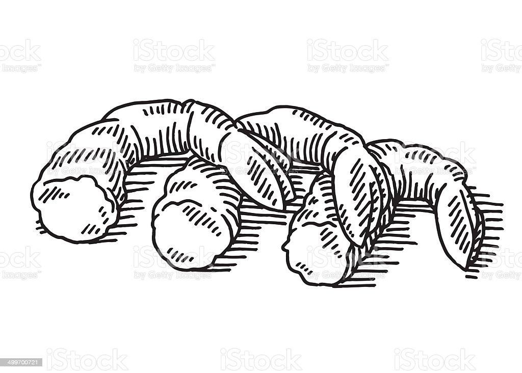 Shrimps Seafood Drawing vector art illustration