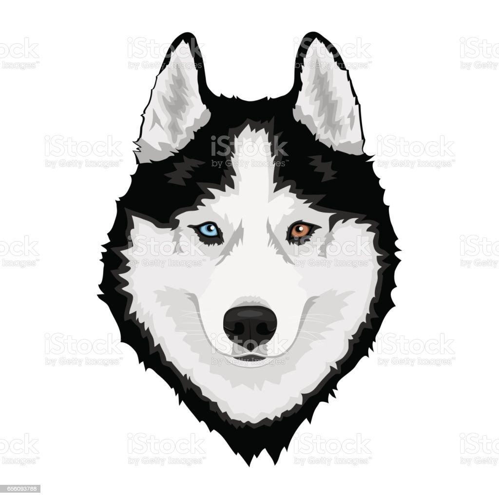 u30b7 u30d9 u30ea u30a2 u30f3 u30cf u30b9 u30ad u30fc  u30a4 u30e9 u30b9 u30c8 u7d20 u6750 istock puppy clip art black and white transparent puppy dog clipart black and white