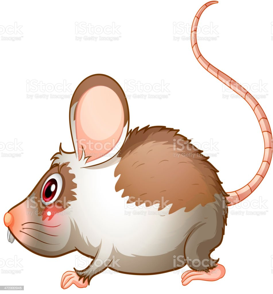 Side view of a rat royalty-free stock vector art