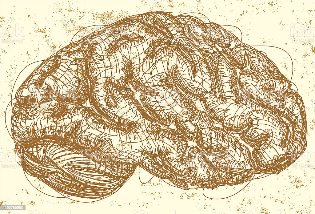 Side view of brain royalty-free stock vector art