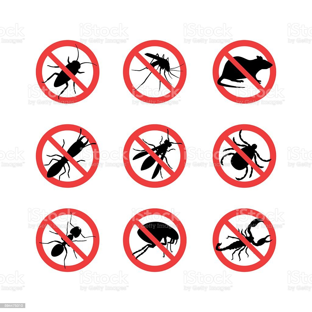Signals of different insect vector art illustration