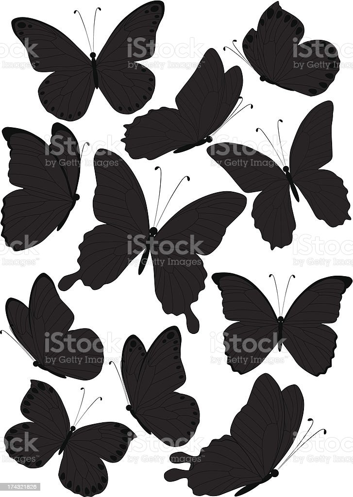 silhouette butterflies royalty-free stock vector art