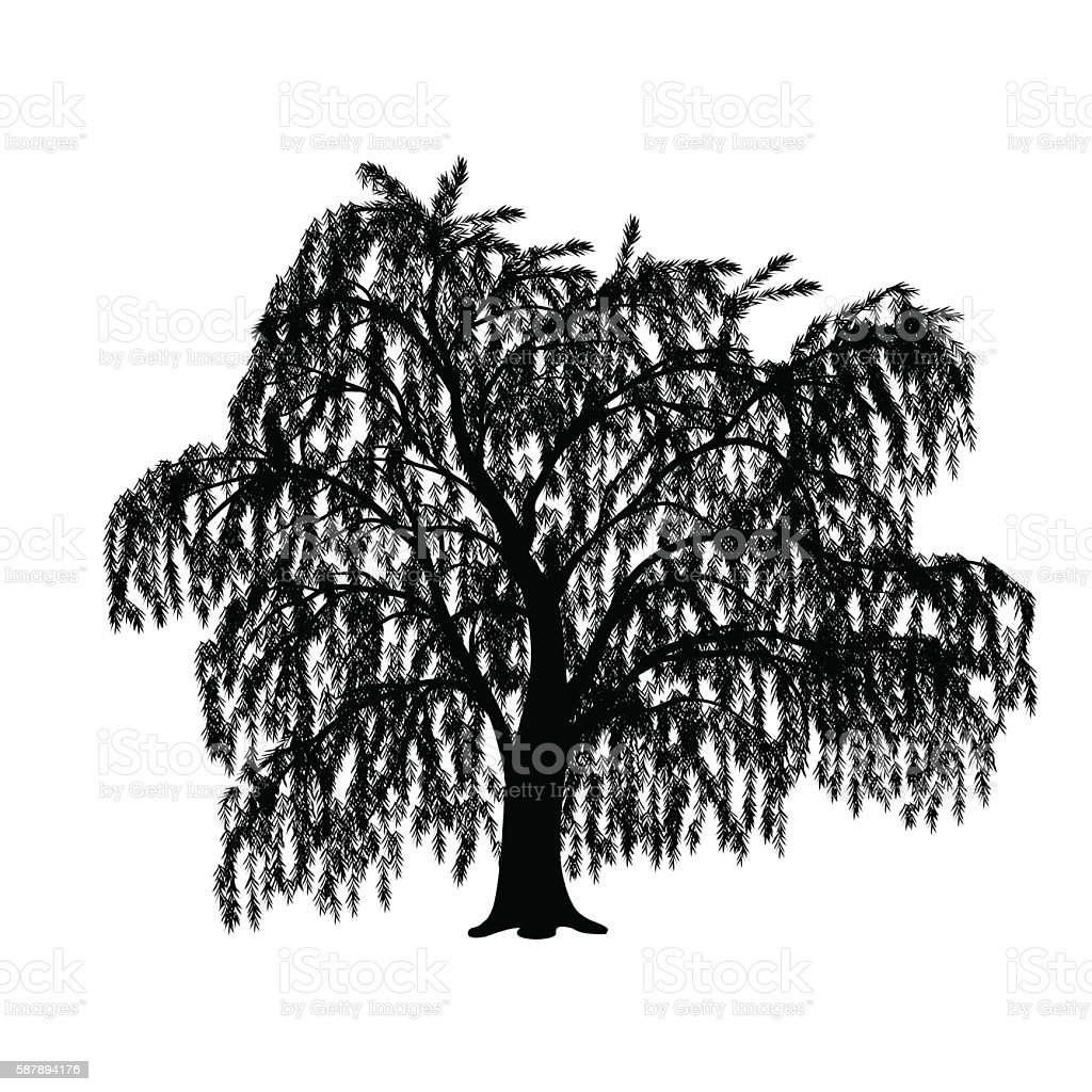 silhouette detached tree willow with leaves vector art illustration