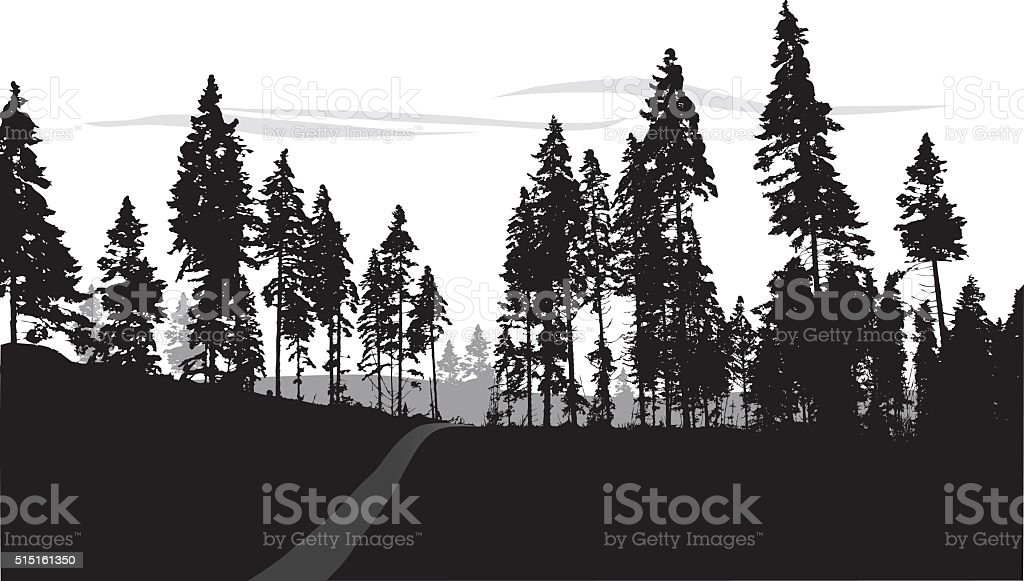 Silhouette Forest Trail vector art illustration