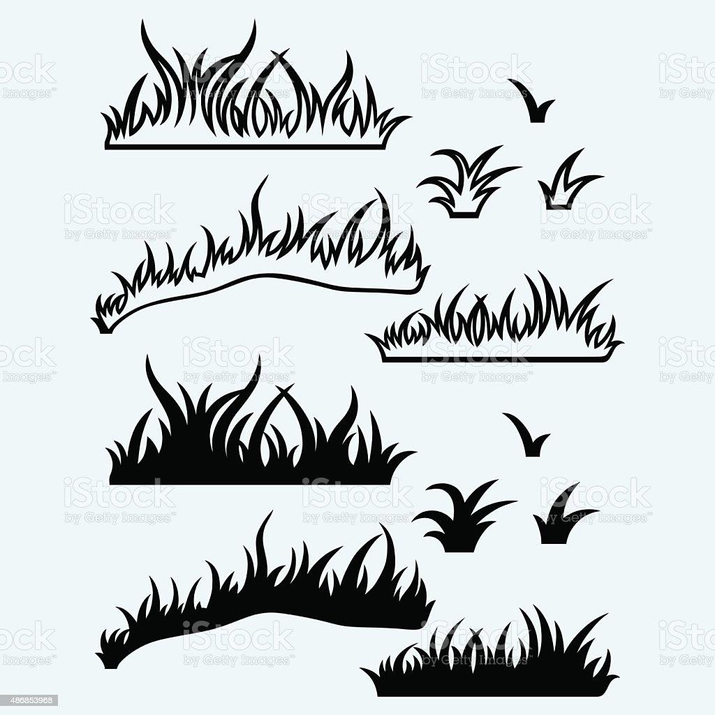 Silhouette grass vector art illustration