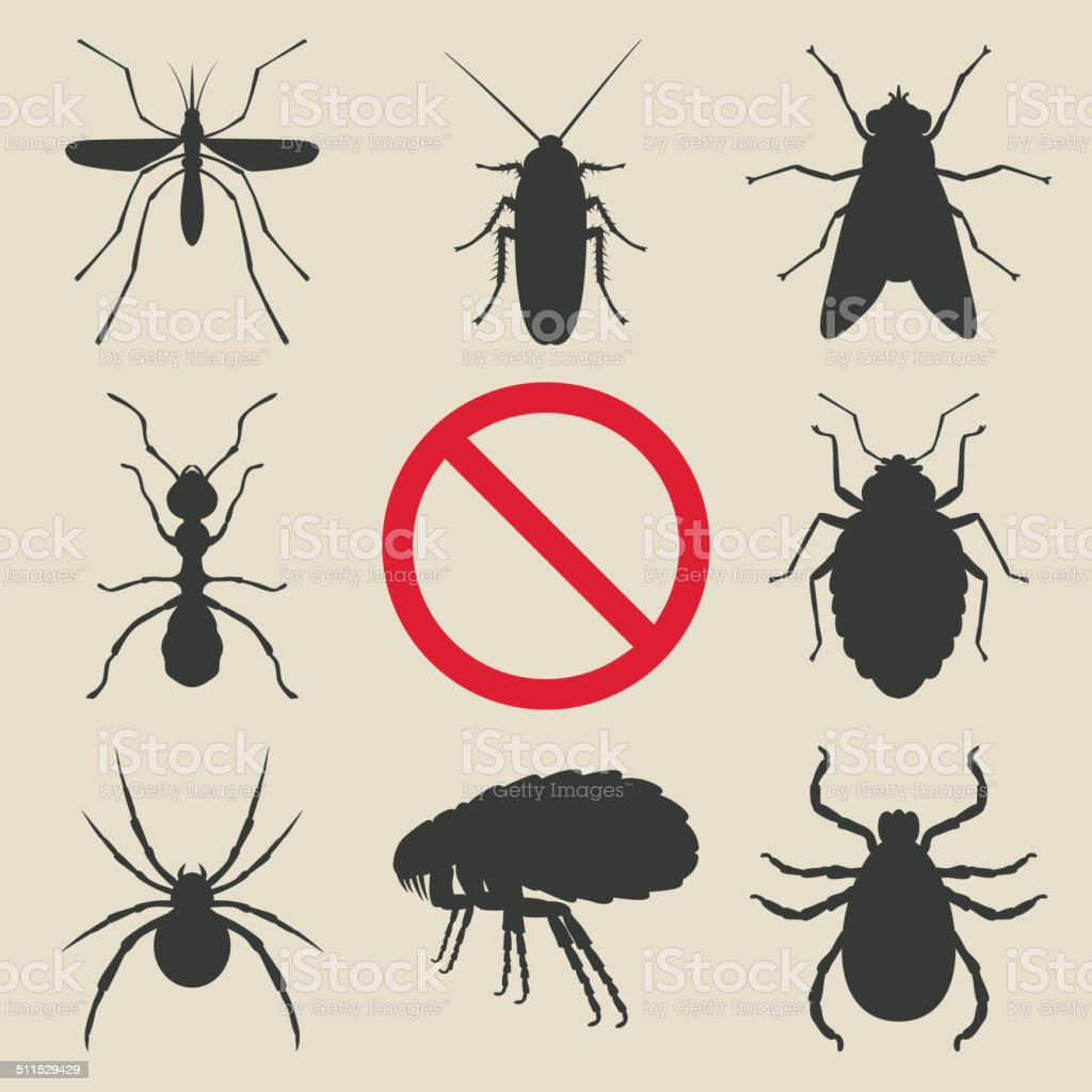 silhouette insects set vector art illustration