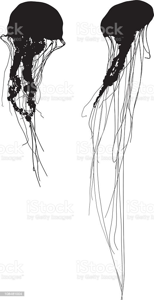 Silhouette jelly fish royalty-free stock vector art