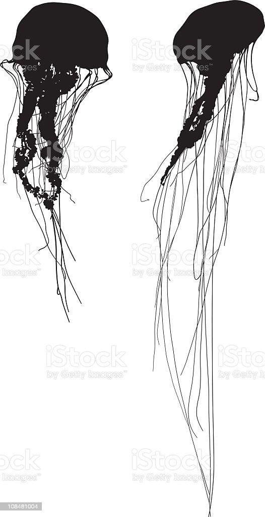 Silhouette jelly fish vector art illustration