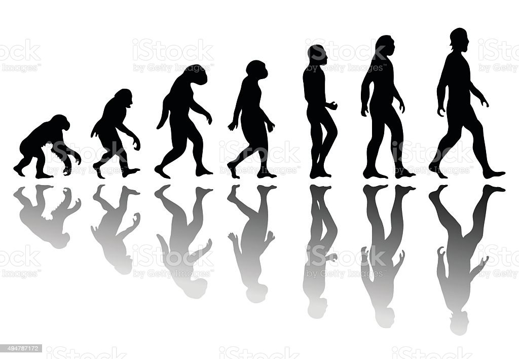 Silhouette man evolution vector art illustration