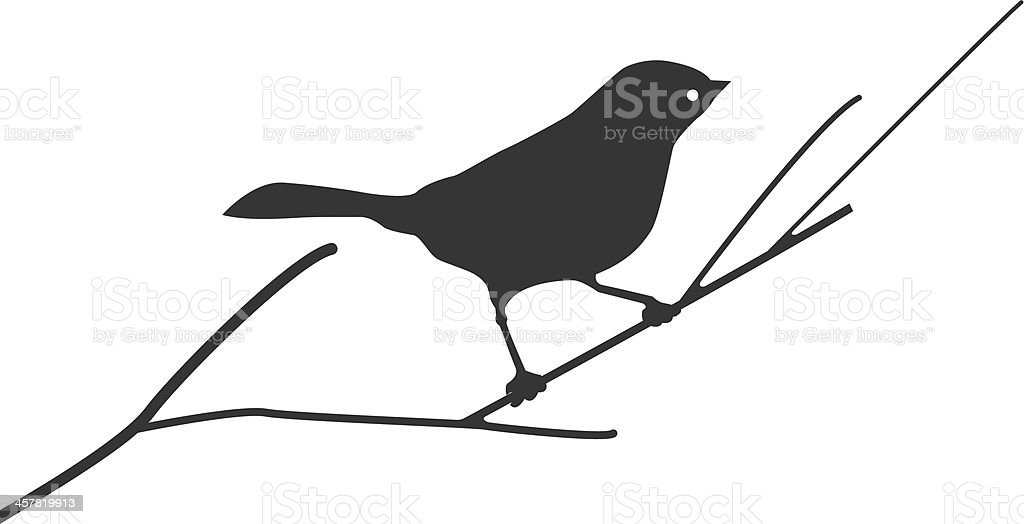Silhouette of a bird on branch vector art illustration