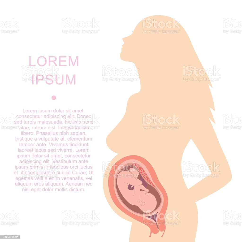 silhouette of a pregnant woman with an embryo vector art illustration