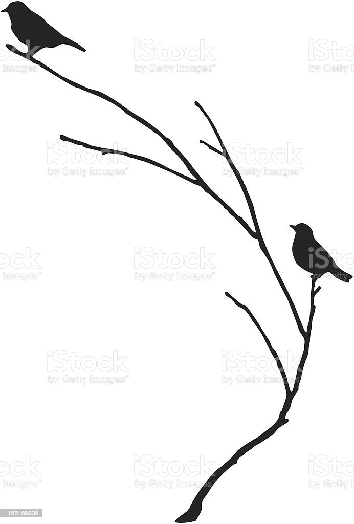 Silhouette of BlueBirds on a Branch vector art illustration