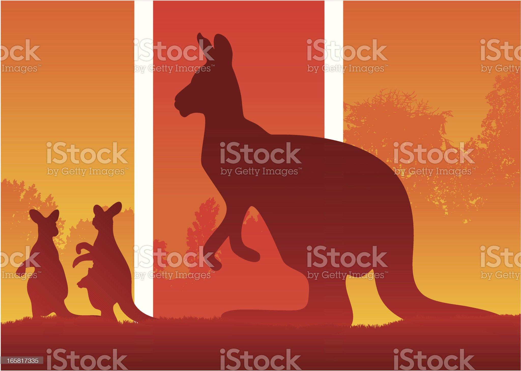 Silhouette of Kangaroos in the australian wild bush royalty-free stock vector art