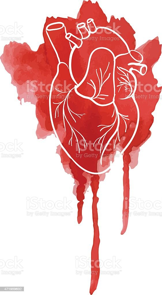Silhouette of the human heart on a red spot watercolor. vector art illustration