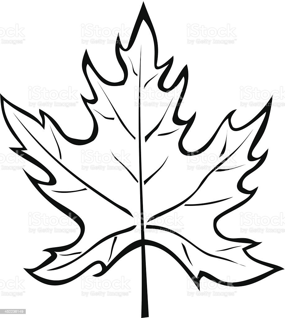 silhouette of the maple leaf isolated on white royalty-free stock vector art