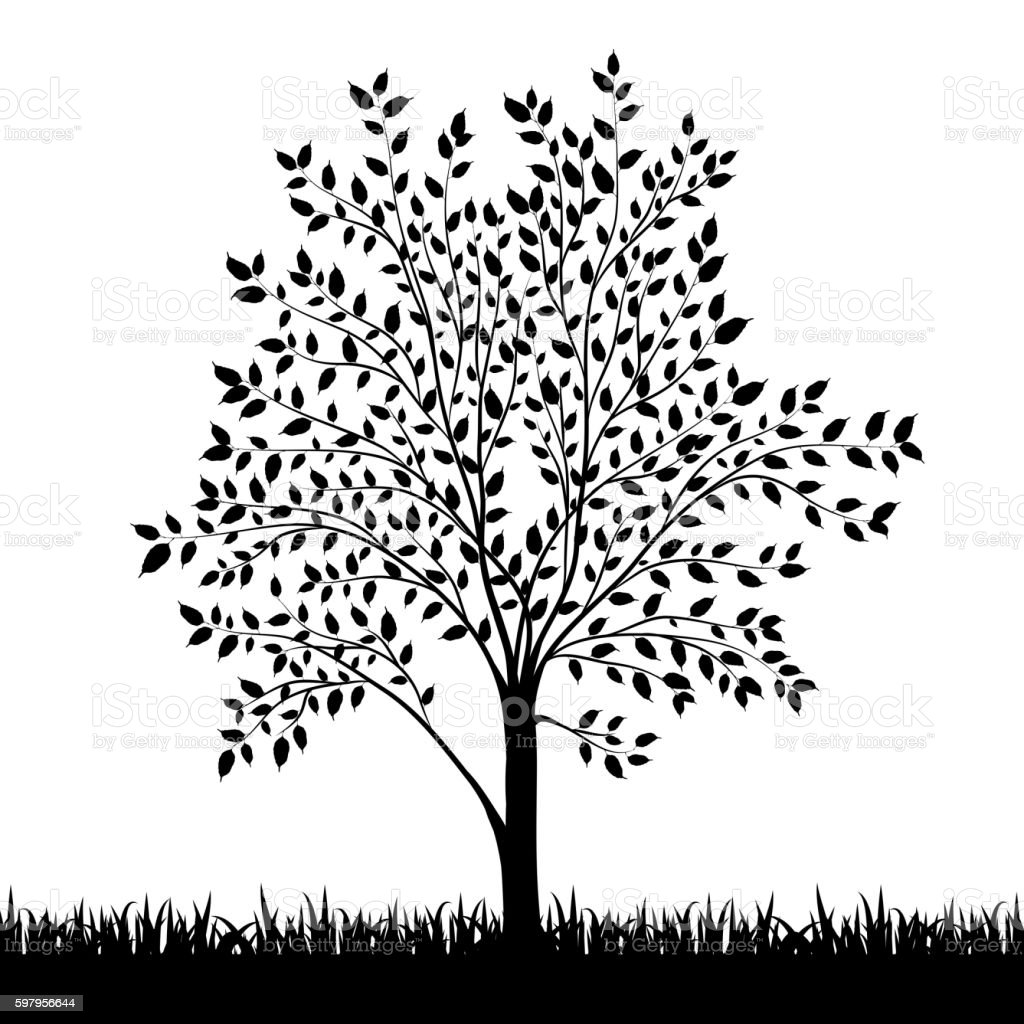 Silhouette of tree and grass background vector vector art illustration