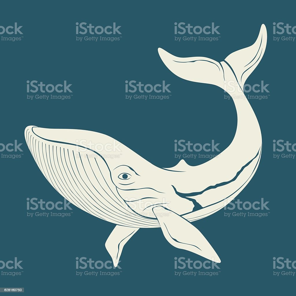 Silhouette of whale. Template for labels. Vector vector art illustration
