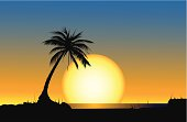 Silhouetted palm tree on a beach with a giant sun setting