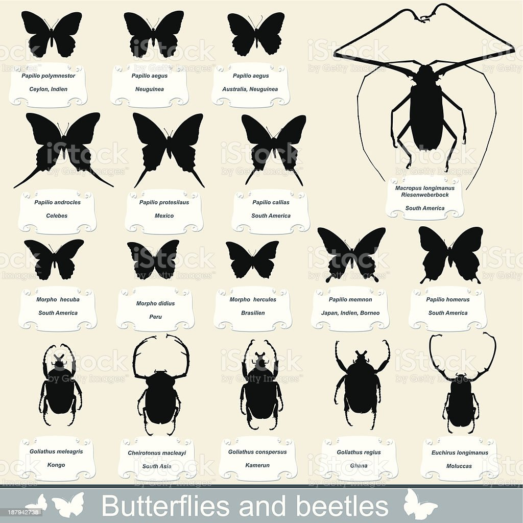 silhouettes of insects - beetles and butterflies royalty-free stock vector art